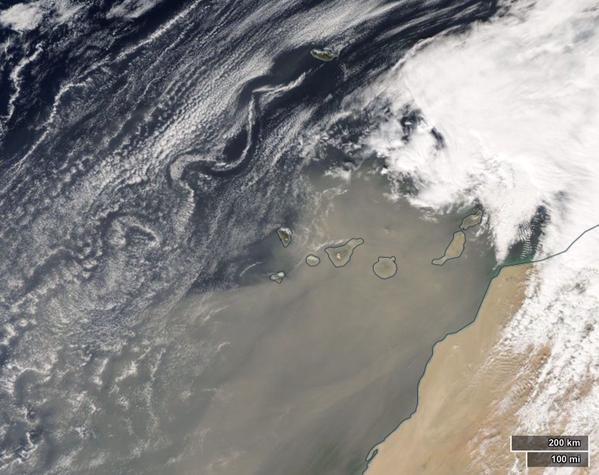 calima MODIS